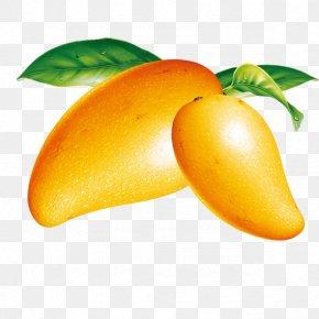 Mango - Ice Cream Mango Fruit PNG