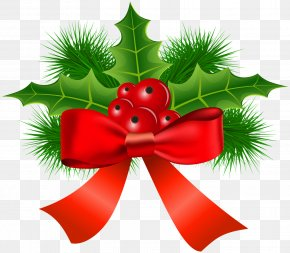 Mistletoe - Christmas Ornament Common Holly Clip Art PNG