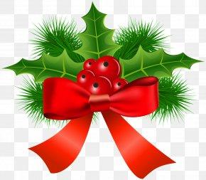 Mistletoe - Christmas Ornament Common Holly Clip Art PNG