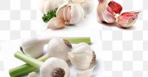 Onion Genus - Garlic Broccoli Vegetarian Cuisine Organic Food Vegetable PNG