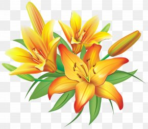 Yellow Lilies Flowers Decoration Clipart Image - Flower Yellow Clip Art PNG