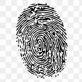 Fingerprint Image - Fingerprint Clip Art PNG
