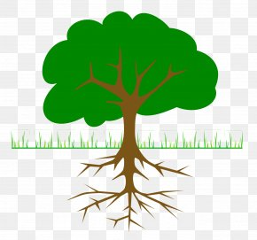 Family Tree - The Great Kapok Tree Branch Clip Art PNG