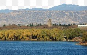 Swan Lake Scenic - Nature Fukei Lake PNG