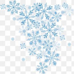 Vector Blue Snowflake - Snowflake Winter Euclidean Vector Christmas PNG