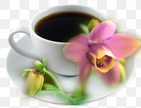Coffee Cup Brown Sugar Pink Flowers - Coffee Morning Wednesday PNG