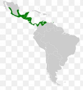 United States - Latin America South America Central America Caribbean United States PNG