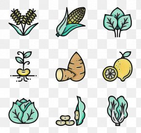 Plant Stem Herbaceous Plant - Leaf Green Plant Line Art Herbaceous Plant PNG