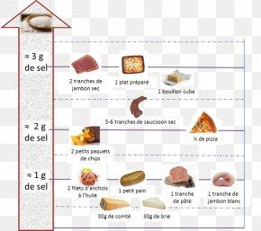 Ham - Ham Food Salt Eating Nutrition PNG