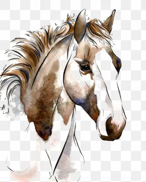 Horse - American Paint Horse Watercolor Painting Horses In Art Equestrianism PNG