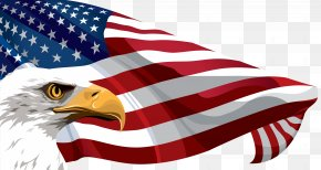 American Flag And Eagle Transparent Clip Art Image - Flag Of The United States Clip Art PNG