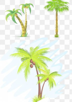 Coconut Tree Painted - Coconut Tree Arecaceae Clip Art PNG