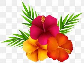 Exotic Flowers Clip Art Image - Flower Clip Art PNG