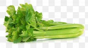 Vegetable - Organic Food Vegetable Greens Vegetarian Cuisine PNG