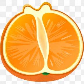 Food,fruit,vegetables,Melon Fruits And Vegetables,delicious - Orange Vegetable Grapefruit Clip Art PNG