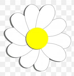 Daisy Flower Cliparts - Flower Common Daisy Coloring Book Clip Art PNG