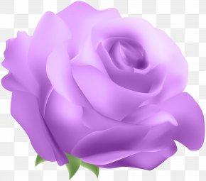 Deco Rose Purple Clip Art - Blue Rose Clip Art PNG