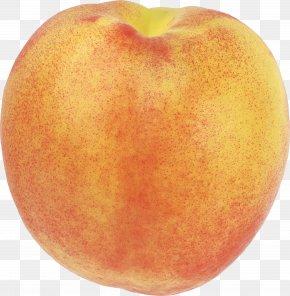 Peach Image - Nectarine Saturn Peach Fruit PNG