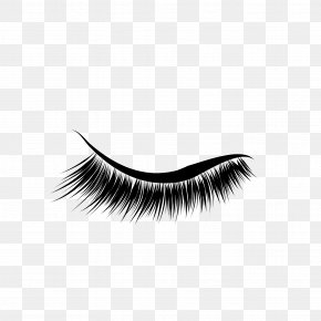 Eyelashes - Eyelash Extensions Eyebrow Cosmetics PNG