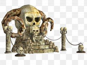 Skull - Skull Skeleton Bone Stock PNG