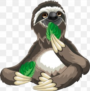 Sloths Eat Leaves - Sloth Cartoon Royalty-free PNG