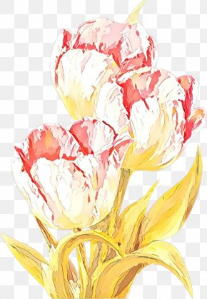 Lily Family Petal - Watercolor Pink Flowers PNG
