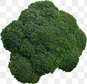 Cauliflower - Cauliflower Cabbage Kale Vegetable PNG