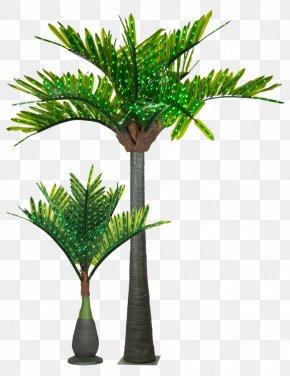 Yard - Light Arecaceae Tree Date Palm Clip Art PNG