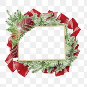 Christmas Gift Ribbon - Christmas Photography Illustration PNG