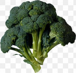 Broccoli Image - Broccoli Cabbage Kohlrabi Vegetable Cauliflower PNG