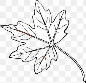 Leaf - Autumn Leaf Color Red Clip Art PNG