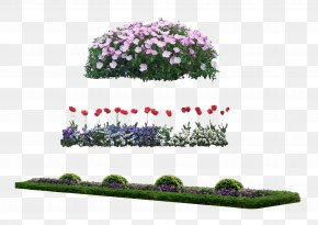 Flower Bed - Flower PNG