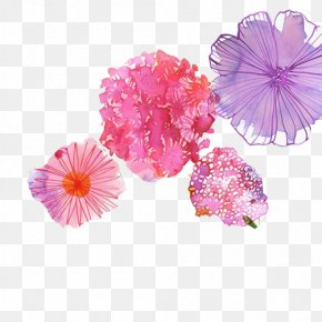Watercolor Floral Decoration Pictures - Watercolor: Flowers Painting Drawing Illustration PNG