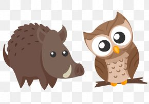 Owl Head Tilt Cute Animal Wild Boar - Owl Cartoon Clip Art PNG