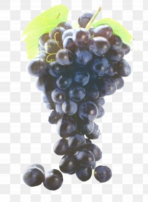 Raisin Snack - Grape Cartoon PNG