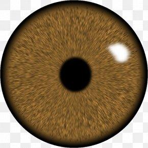 Eye - Eye Lens GIMP Iris PNG