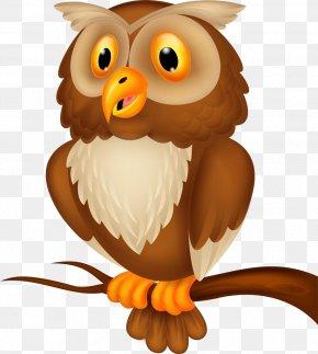 Owl - Owl Cartoon Royalty-free Illustration PNG