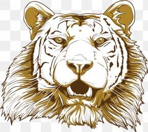 Vector Cartoon Tiger - Tiger Big Cat Illustration PNG