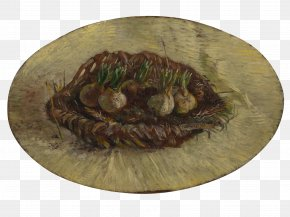 Painting - Van Gogh Museum National Gallery Of Victoria Basket Of Hyacinth Bulbs The Painter Of Sunflowers PNG