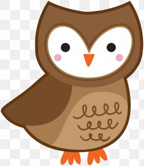 Middletown Cartoon - Barn Owl Bird Clip Art Image PNG