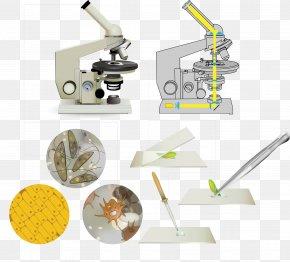 Vector Microscope - Euclidean Vector Microscope PNG