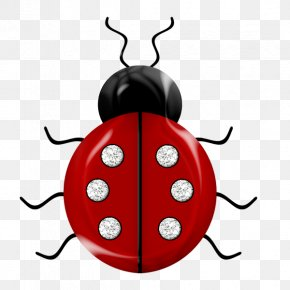 Red Beetle - Insect Ladybird Red Easter Egg Bee Clip Art PNG