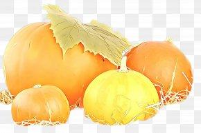 Vegetarian Food Yellow Onion - Orange PNG