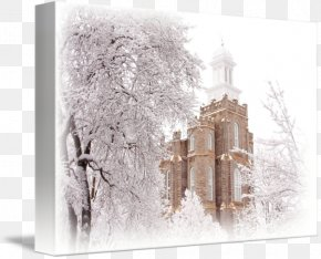 Lds Temple - Logan Temple Gallery Wrap Canvas Photography PNG