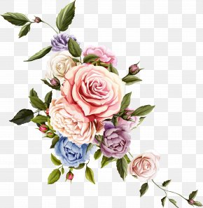 Beautiful Flower - Flower Floral Design Rose Drawing PNG