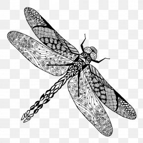 Insect - Tattoo Dragonfly Drawing Stock Photography PNG
