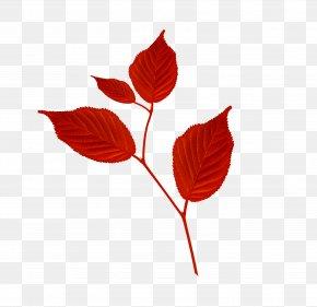 Leaf - Branch Leaf Petal Clip Art PNG