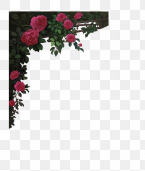 Mysterious Wine Red Roses Border - Red Wine Garden Roses Rosé Picture Frame PNG