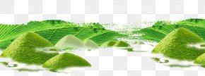 Green Tea Garden Design To Avoid - Green Tea Tea Culture Tea Garden PNG