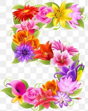 Flower - Floral Design Flower Floristry Number Clip Art PNG
